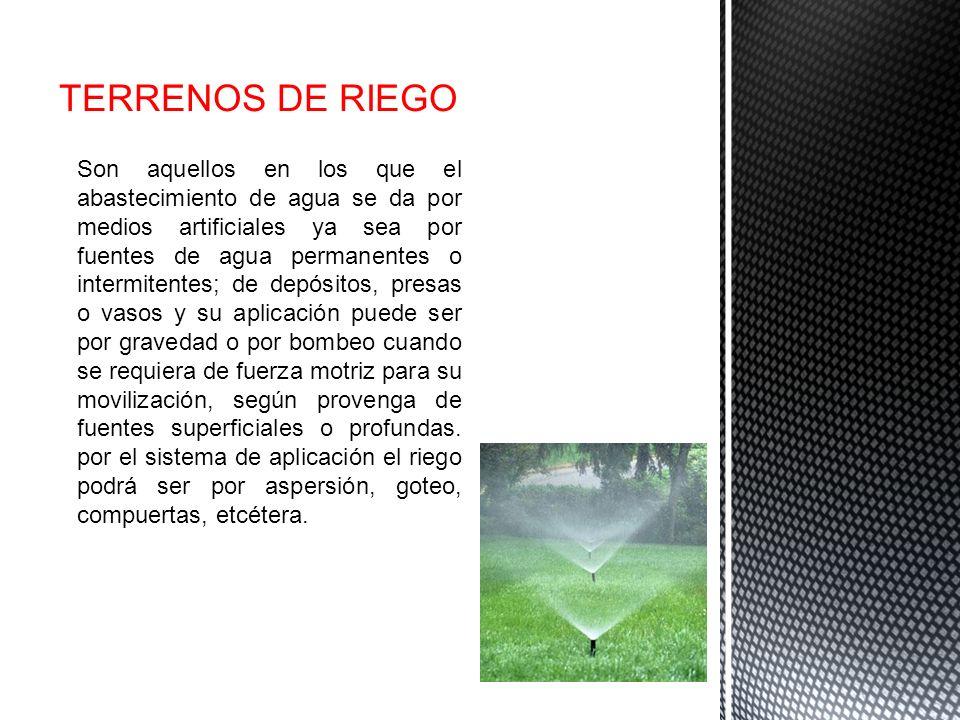 TERRENOS DE RIEGO Son aquellos en los que el abastecimiento de agua se da por medios artificiales ya sea por fuentes de agua permanentes o intermitent