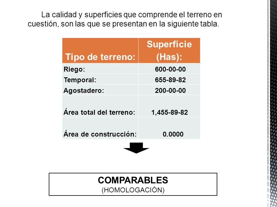 Tipo de terreno: Superficie (Has): Riego: 600-00-00 Temporal: 655-89-82 Agostadero: 200-00-00 Área total del terreno: 1,455-89-82 Área de construcción