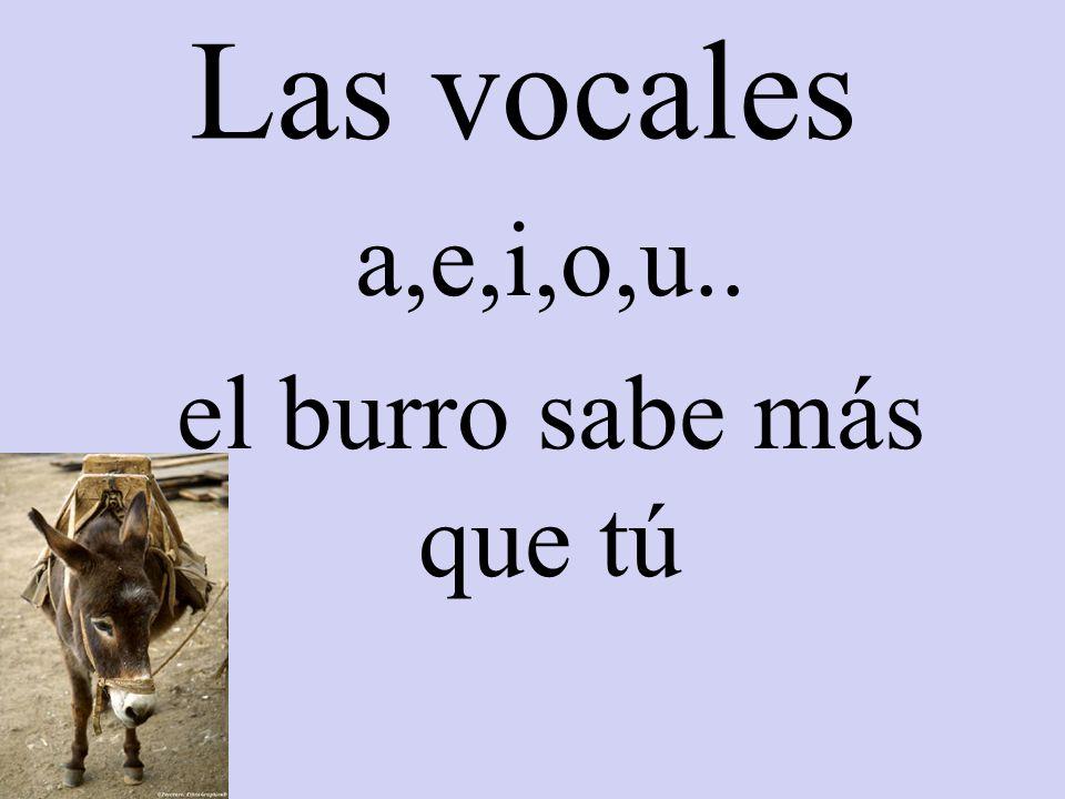 Las vocales a,e,i,o,u.. el burro sabe más que tú