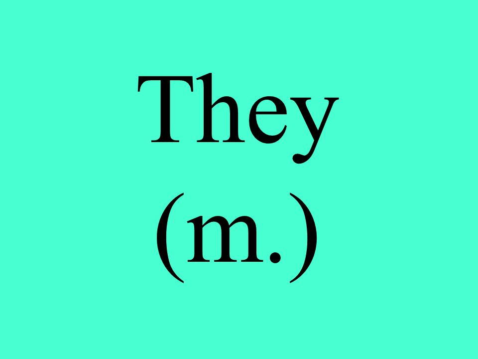 They (m.)