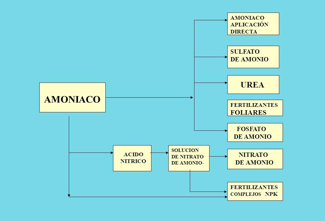 AMONIACO APLICACIÓN DIRECTA FERTILIZANTES COMPLEJOS NPK NITRATO DE AMONIO UREA FOSFATO DE AMONIO AMONIACO SULFATO DE AMONIO FERTILIZANTES FOLIARES SOL