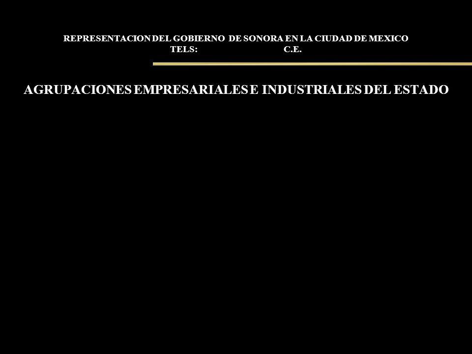 REPRESENTACION DEL GOBIERNO DE SONORA EN LA CIUDAD DE MEXICO TELS: C.E. AGRUPACIONES EMPRESARIALES E INDUSTRIALES DEL ESTADO