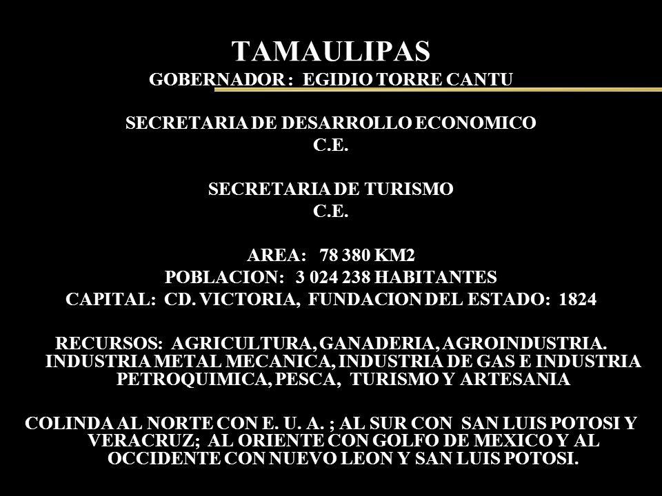 TAMAULIPAS GOBERNADOR : EGIDIO TORRE CANTU SECRETARIA DE DESARROLLO ECONOMICO C.E. SECRETARIA DE TURISMO C.E. AREA: 78 380 KM2 POBLACION: 3 024 238 HA