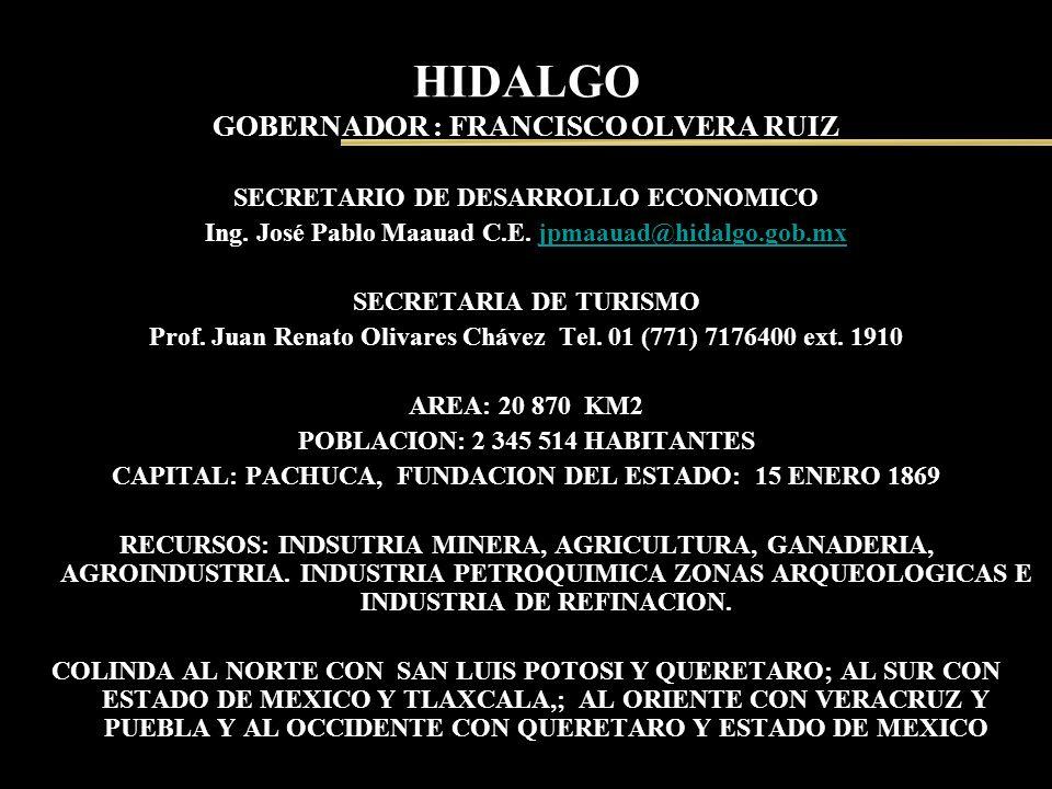 HIDALGO GOBERNADOR : FRANCISCO OLVERA RUIZ SECRETARIO DE DESARROLLO ECONOMICO Ing. José Pablo Maauad C.E. jpmaauad@hidalgo.gob.mxjpmaauad@hidalgo.gob.