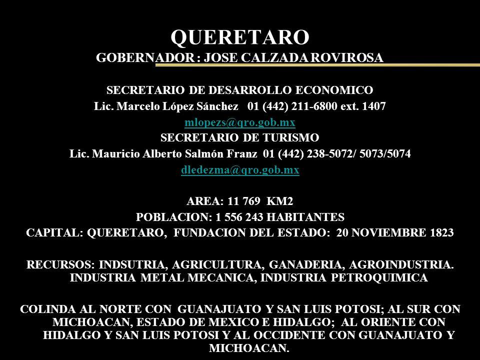 QUERETARO GOBERNADOR : JOSE CALZADA ROVIROSA SECRETARIO DE DESARROLLO ECONOMICO Lic. Marcelo López Sánchez 01 (442) 211-6800 ext. 1407 mlopezs@qro.gob