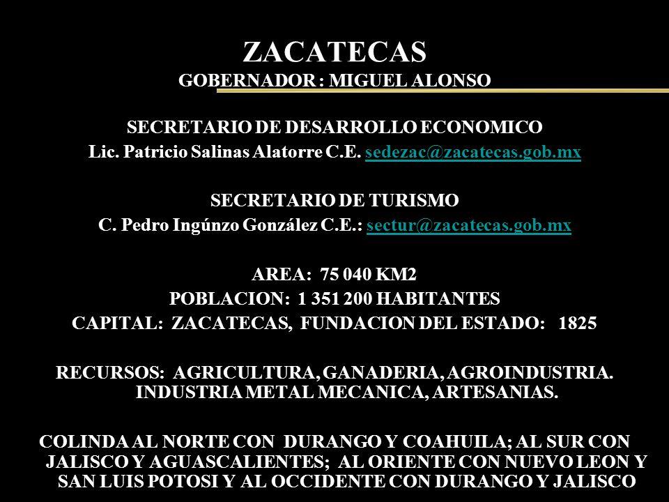 ZACATECAS GOBERNADOR : MIGUEL ALONSO SECRETARIO DE DESARROLLO ECONOMICO Lic. Patricio Salinas Alatorre C.E. sedezac@zacatecas.gob.mxsedezac@zacatecas.
