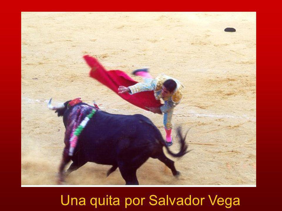 Una quita por Salvador Vega
