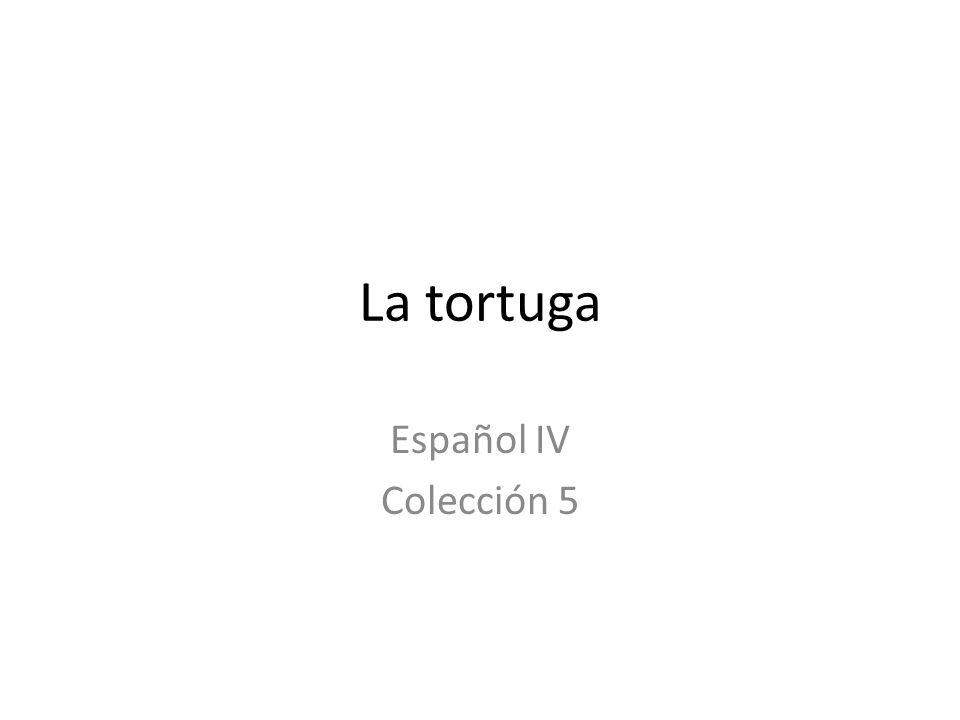 La tortuga Español IV Colección 5