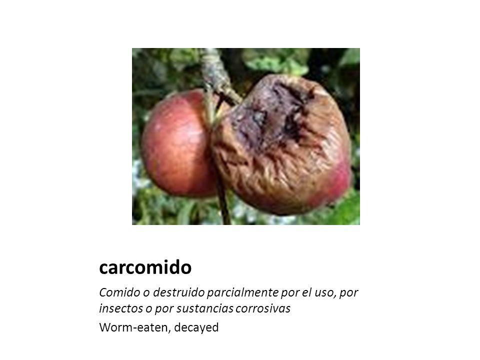carcomido Comido o destruido parcialmente por el uso, por insectos o por sustancias corrosivas Worm-eaten, decayed