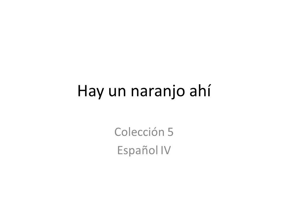Hay un naranjo ahí Colección 5 Español IV