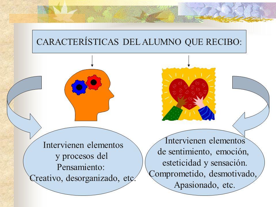 CARACTERÍSTICAS DEL ALUMNO QUE RECIBO: Intervienen elementos y procesos del Pensamiento: Creativo, desorganizado, etc. Intervienen elementos de sentim