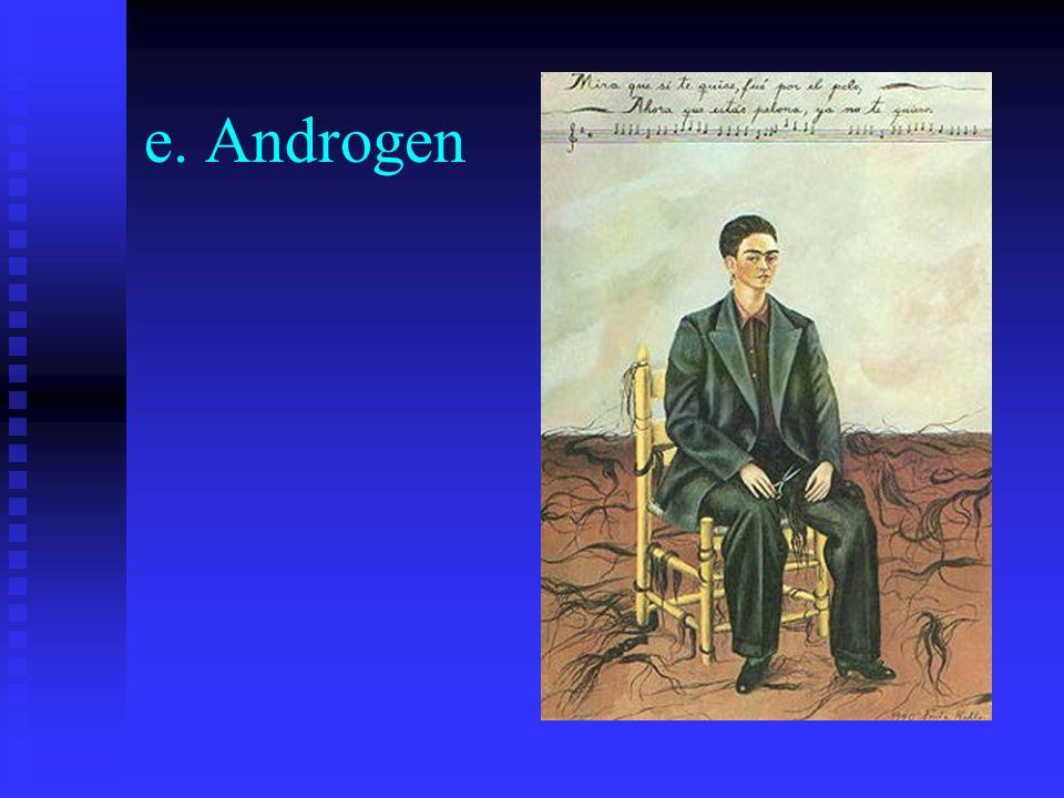 e. Androgen
