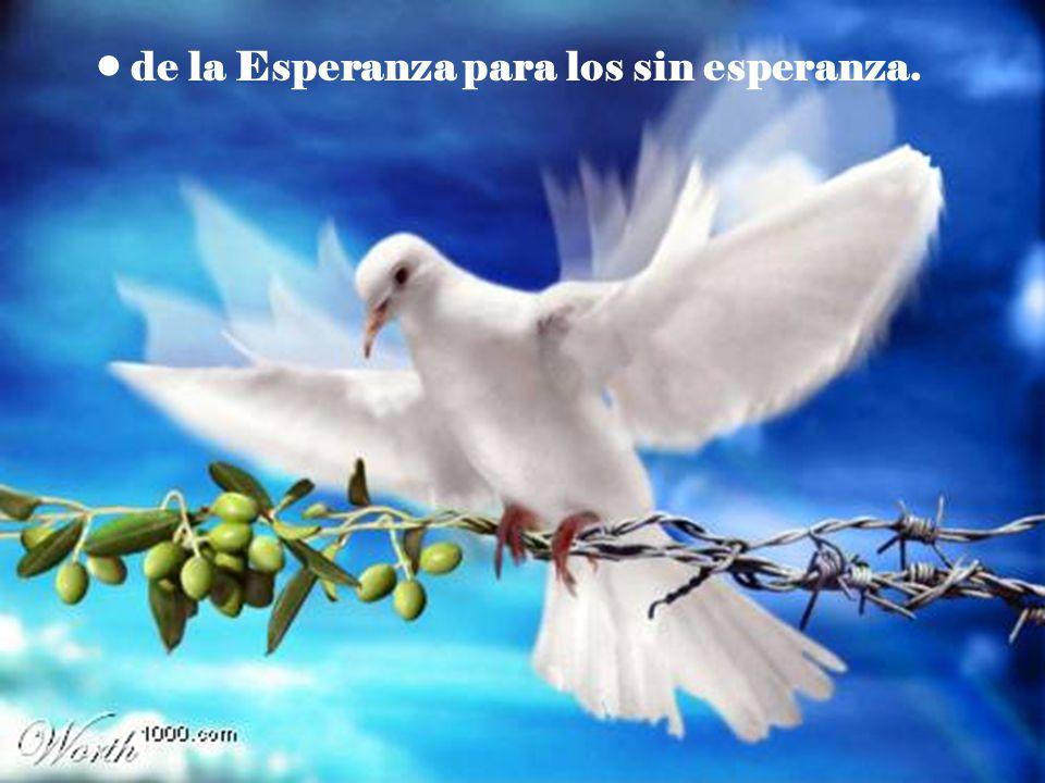 pero que a los creyentes, nos dejen vivir la Navidad: en la que queremos encontrar el aire fresco y maravilloso que nos trae nuestro Dios.