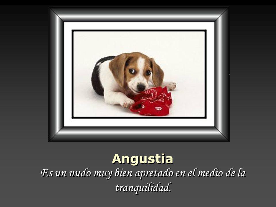Angustia Es un nudo muy bien apretado en el medio de la tranquilidad.