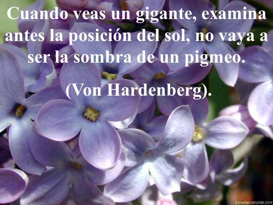 Cuanto más pequeño es el corazón, más odio alberga. Victor Hugo