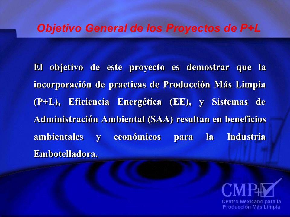 El objetivo de este proyecto es demostrar que la incorporación de practicas de Producción Más Limpia (P+L), Eficiencia Energética (EE), y Sistemas de