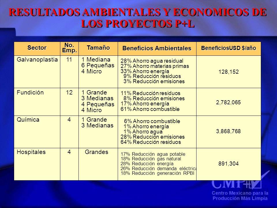 RESULTADOS AMBIENTALES Y ECONOMICOS DE LOS PROYECTOS P+L Química SectorNo.Emp.Tamaño Galvanoplastia Fundición Beneficios Ambientales Hospitales 111 Me