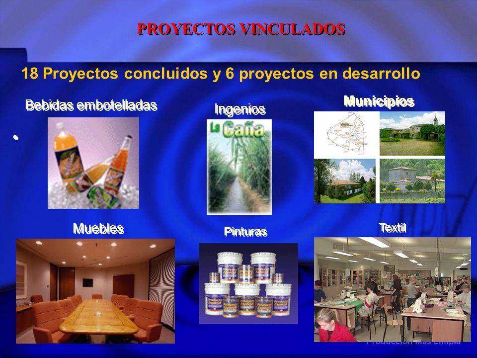 Textil Muebles Bebidas embotelladas Pinturas Ingenios Municipios 18 Proyectos concluidos y 6 proyectos en desarrollo PROYECTOS VINCULADOS