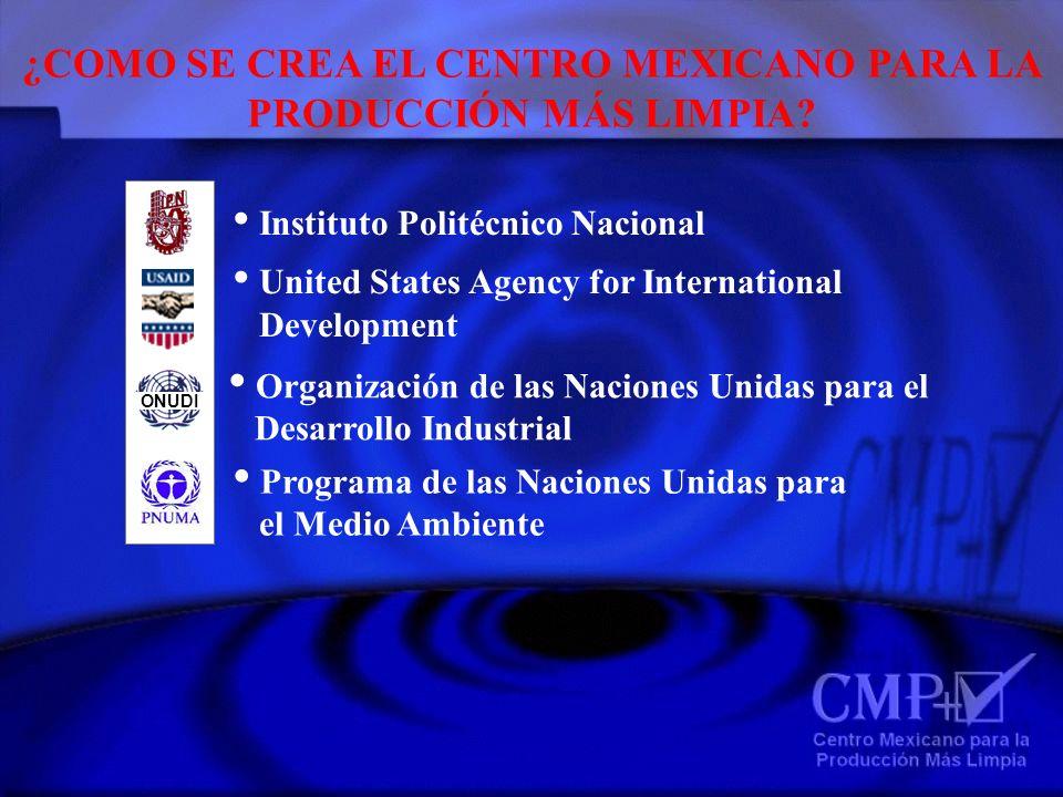 MISION DEL CMP+L Facilitar el establecimiento y mantenimiento del concepto de P+L en la industria y legislación mexicanas para el ahorro de recursos y mejoramiento ambiental del país, actuando como promotor de la idea, facilitador y consultor.