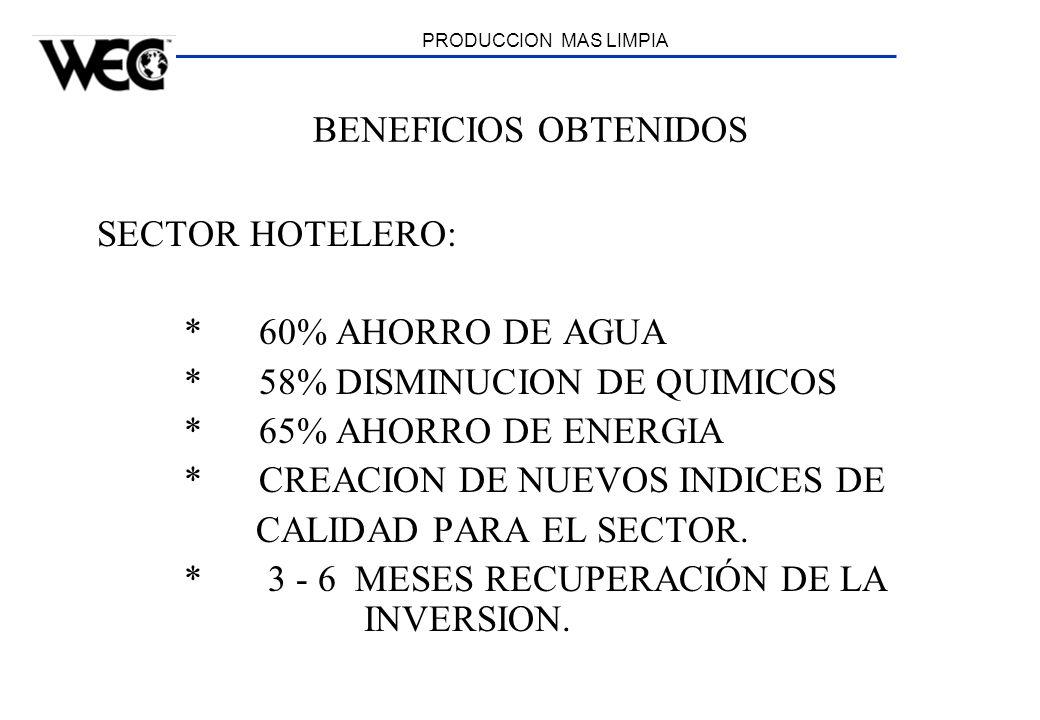PRODUCCION MAS LIMPIA BENEFICIOS OBTENIDOS SECTOR HOTELERO: * 60% AHORRO DE AGUA * 58% DISMINUCION DE QUIMICOS * 65% AHORRO DE ENERGIA * CREACION DE N