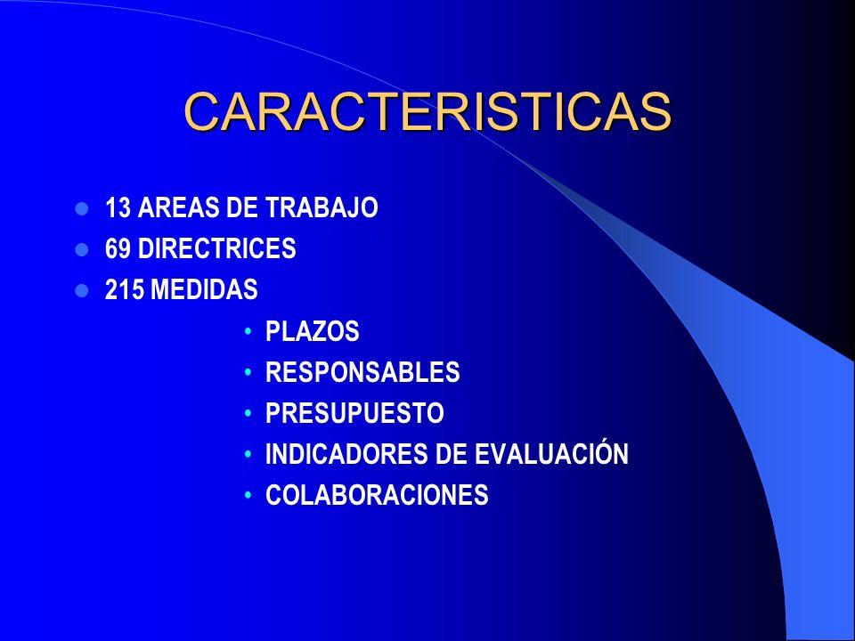 CARACTERISTICAS 13 AREAS DE TRABAJO 69 DIRECTRICES 215 MEDIDAS PLAZOS RESPONSABLES PRESUPUESTO INDICADORES DE EVALUACIÓN COLABORACIONES