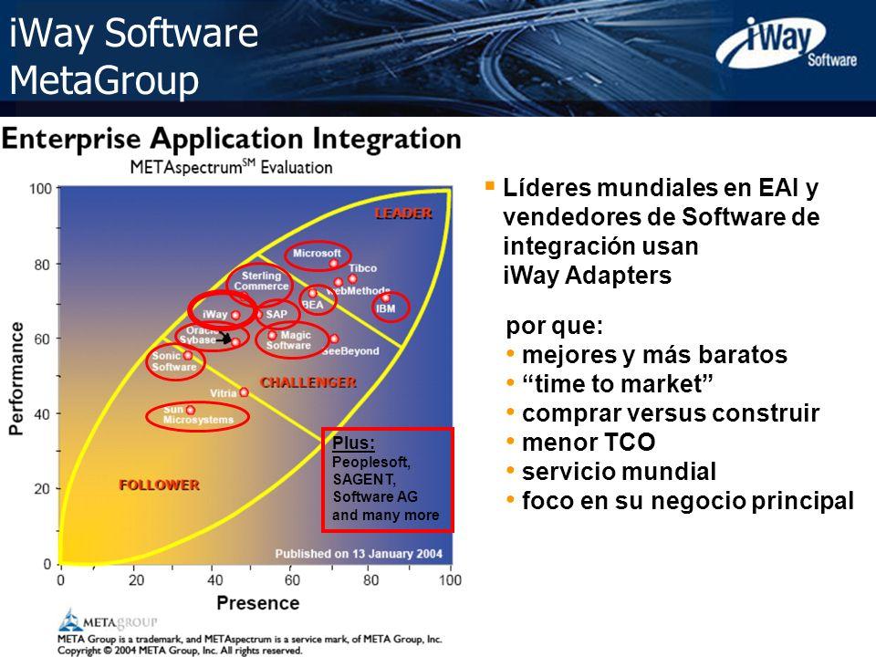 Copyright © 2005 iWay Software 4 iWay Software MetaGroup por que: mejores y más baratos time to market comprar versus construir menor TCO servicio mun