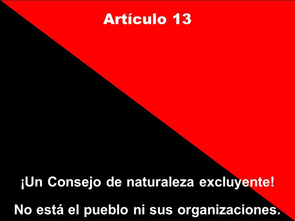 Artículo 13 ¡Un Consejo de naturaleza excluyente! No está el pueblo ni sus organizaciones.