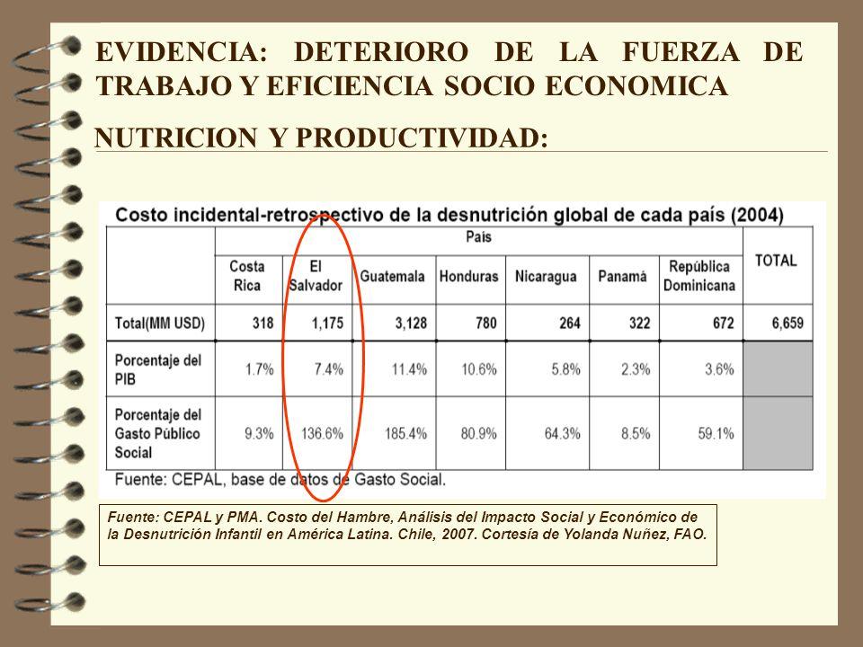 EVIDENCIA: DETERIORO DE LA FUERZA DE TRABAJO Y EFICIENCIA SOCIO ECONOMICA Fuente: CEPAL y PMA. Costo del Hambre, Análisis del Impacto Social y Económi