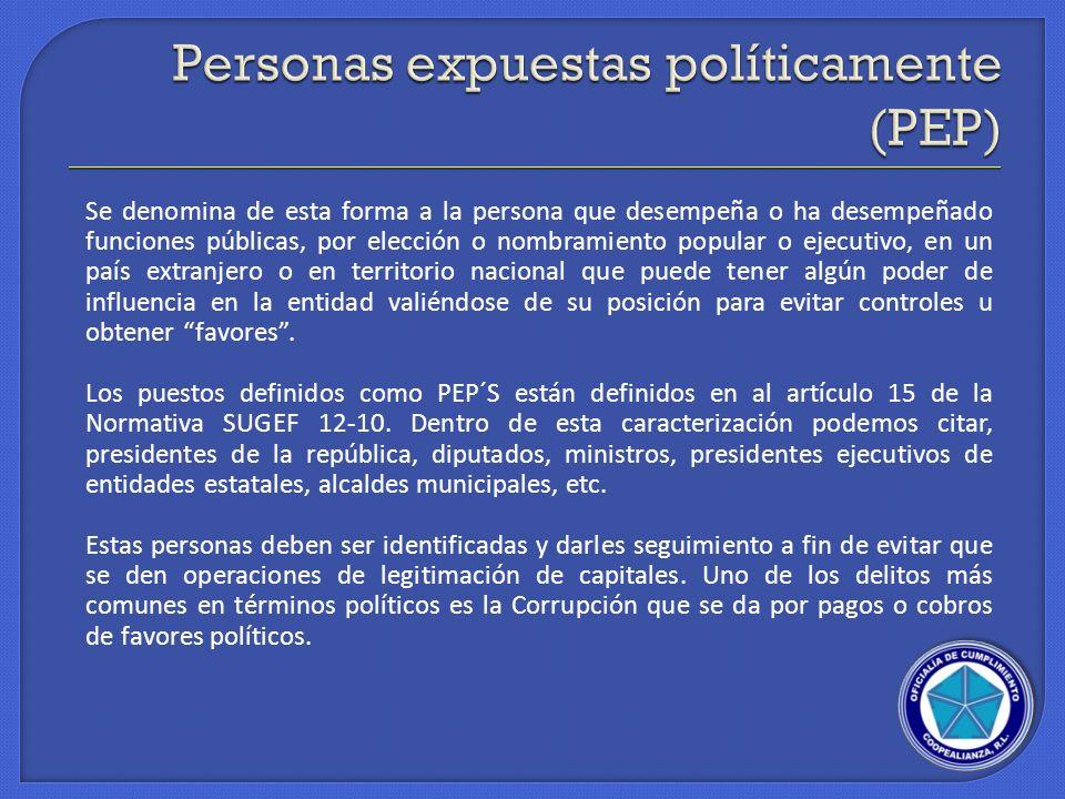 Se denomina de esta forma a la persona que desempeña o ha desempeñado funciones públicas, por elección o nombramiento popular o ejecutivo, en un país