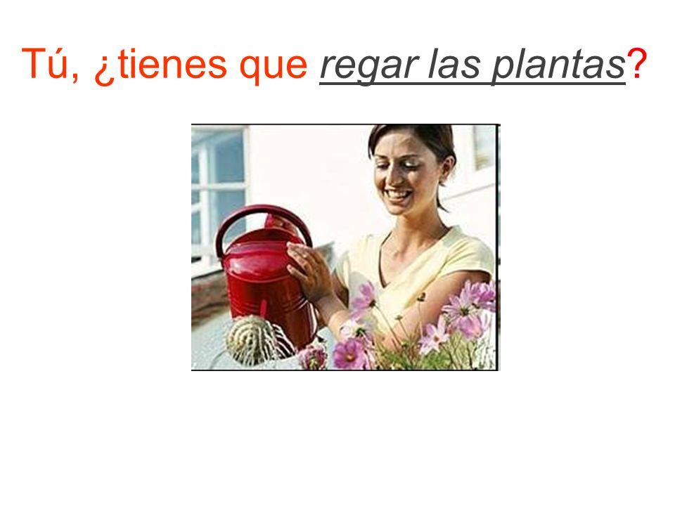 Tú, ¿tienes que regar las plantas