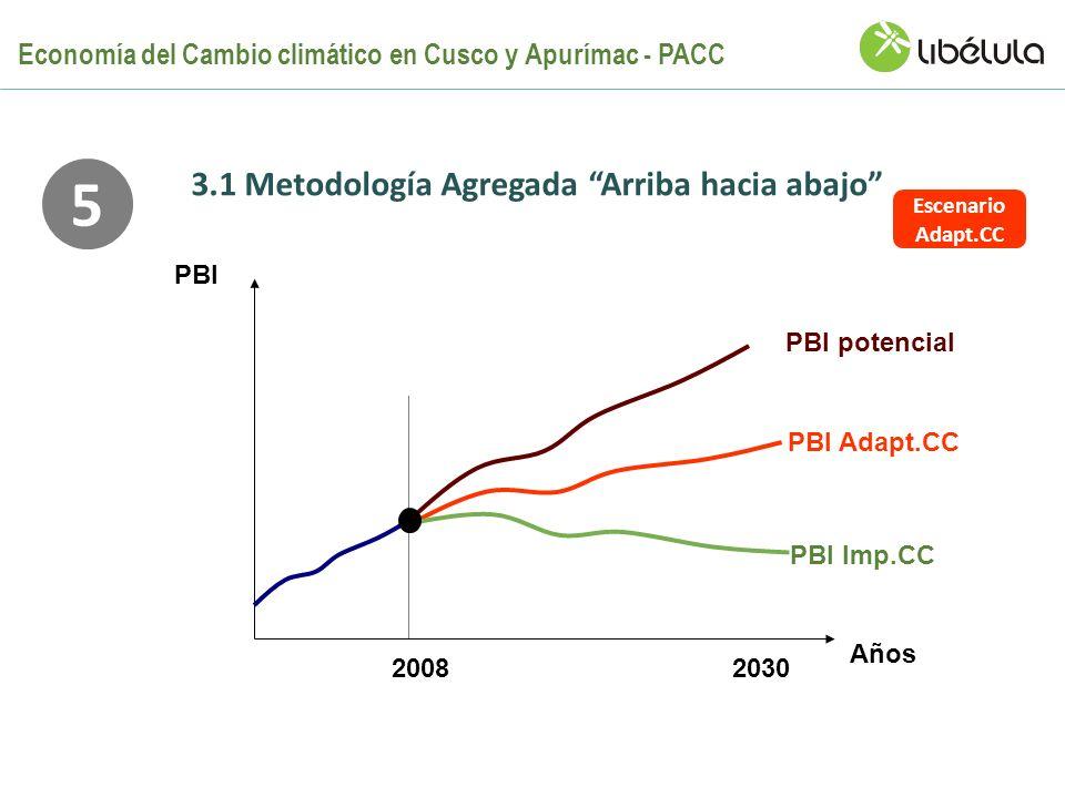 Años PBI 2008 PBI potencial 2030 PBI Adapt.CC PBI Imp.CC 5 Escenario Adapt.CC 3.1 Metodología Agregada Arriba hacia abajo Economía del Cambio climátic