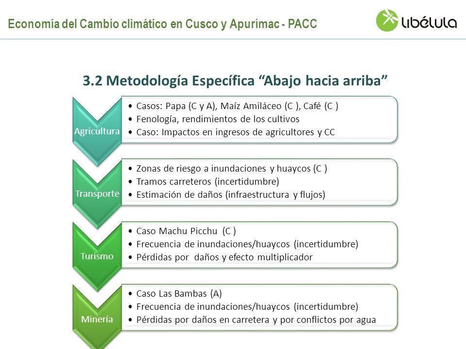 Agricultura Casos: Papa (C y A), Maíz Amiláceo (C ), Café (C ) Fenología, rendimientos de los cultivos Caso: Impactos en ingresos de agricultores y CC