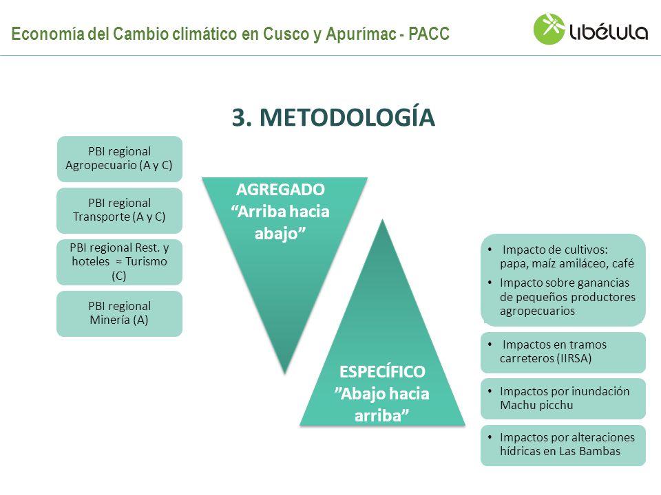 3. METODOLOGÍA ESPECÍFICO Abajo hacia arriba PBI regional Agropecuario (A y C) Impacto de cultivos: papa, maíz amiláceo, café Impacto sobre ganancias
