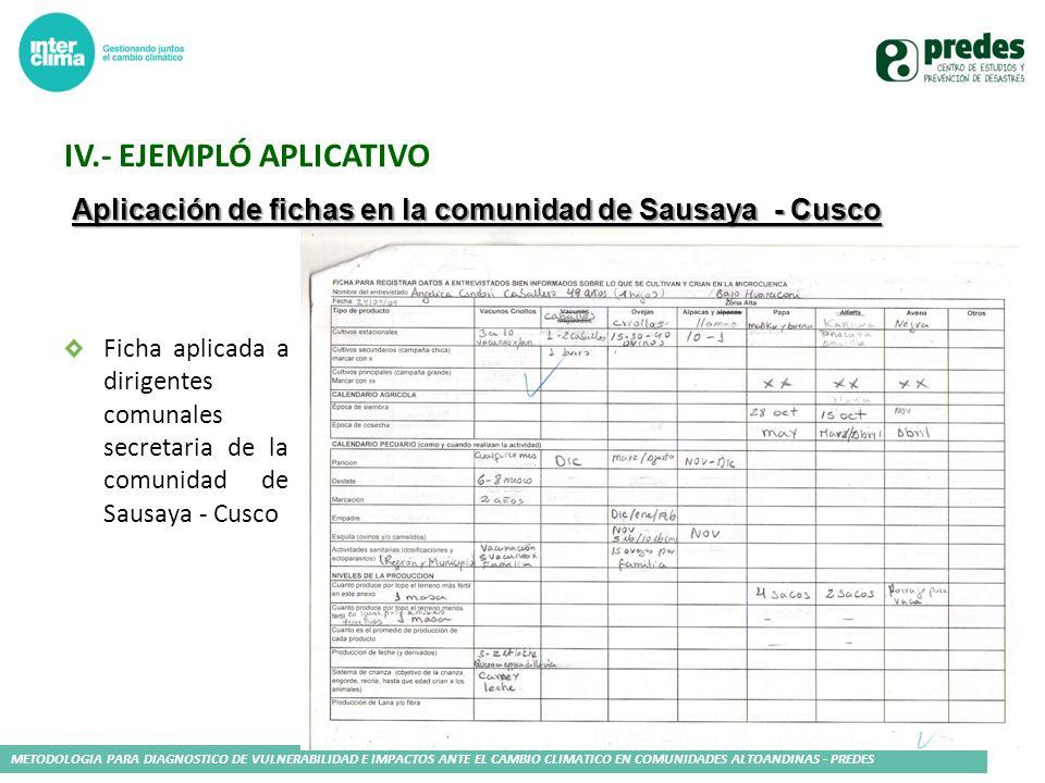 METODOLOGIA PARA DIAGNOSTICO DE VULNERABILIDAD E IMPACTOS ANTE EL CAMBIO CLIMATICO EN COMUNIDADES ALTOANDINAS - PREDES Aplicación de fichas en la comu