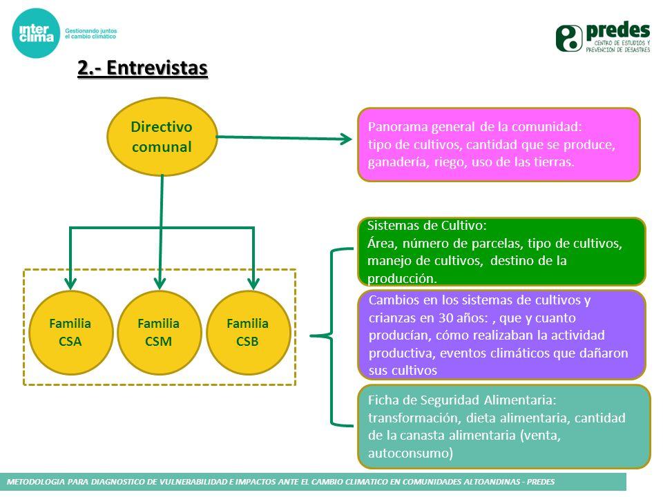2.- Entrevistas Directivo comunal Familia CSA Familia CSM Familia CSB Panorama general de la comunidad: tipo de cultivos, cantidad que se produce, gan