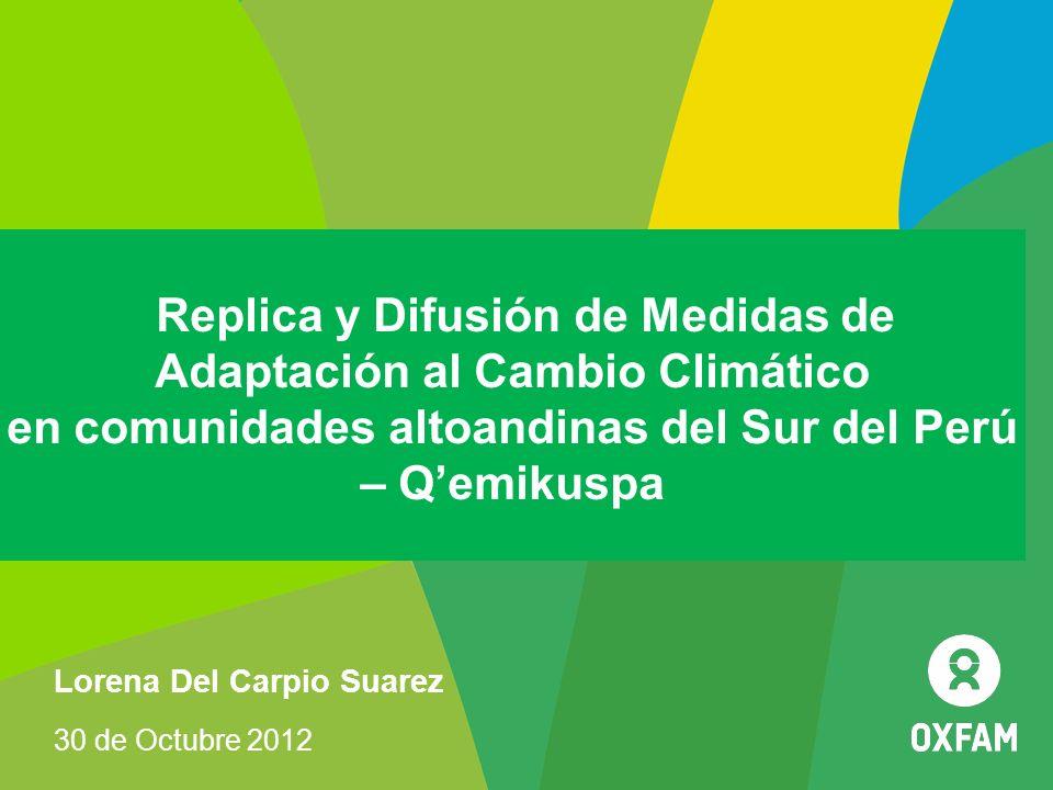 Replica y Difusión de Medidas de Adaptación al Cambio Climático en comunidades altoandinas del Sur del Perú – Qemikuspa Lorena Del Carpio Suarez 30 de
