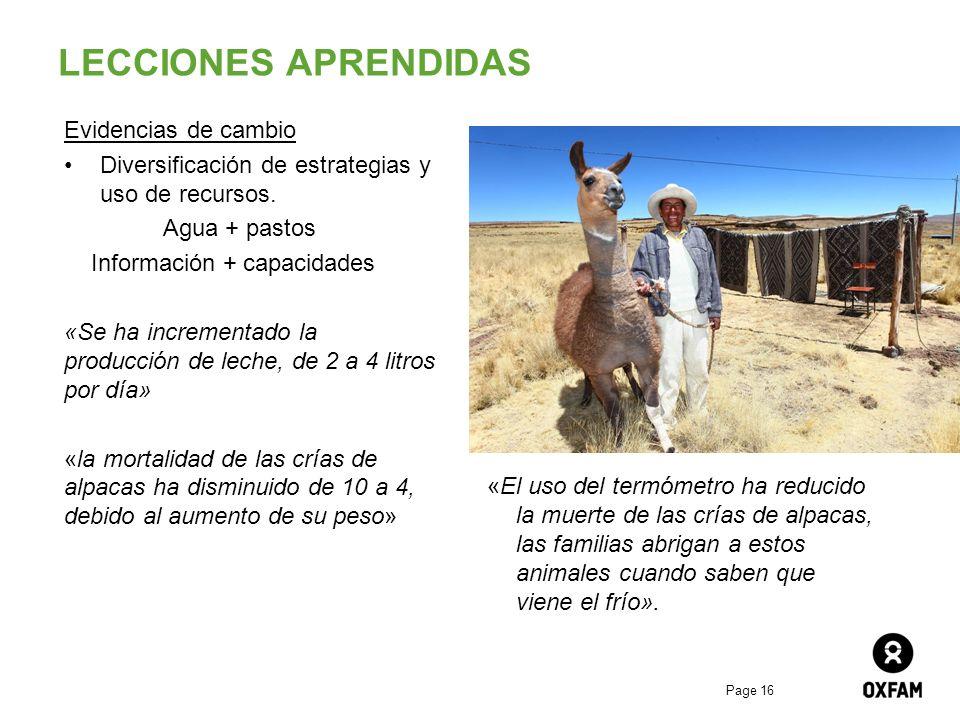 Page 16 LECCIONES APRENDIDAS Evidencias de cambio Diversificación de estrategias y uso de recursos. Agua + pastos Información + capacidades «Se ha inc