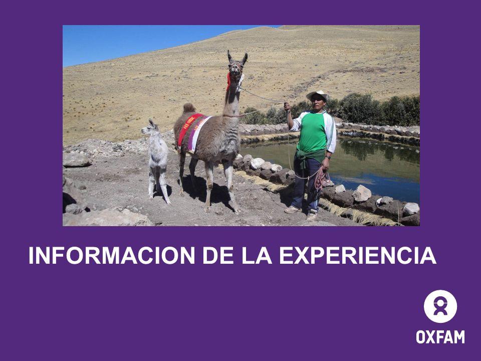 INFORMACION DE LA EXPERIENCIA