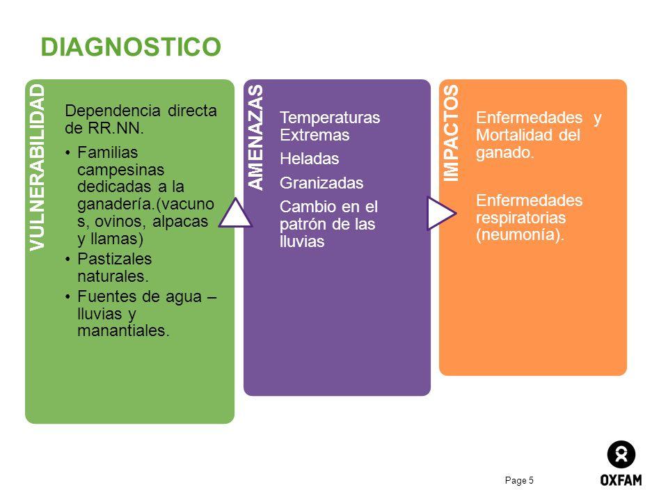 Page 5 DIAGNOSTICO VULNERABILIDAD Dependencia directa de RR.NN. Familias campesinas dedicadas a la ganadería.(vacuno s, ovinos, alpacas y llamas) Past