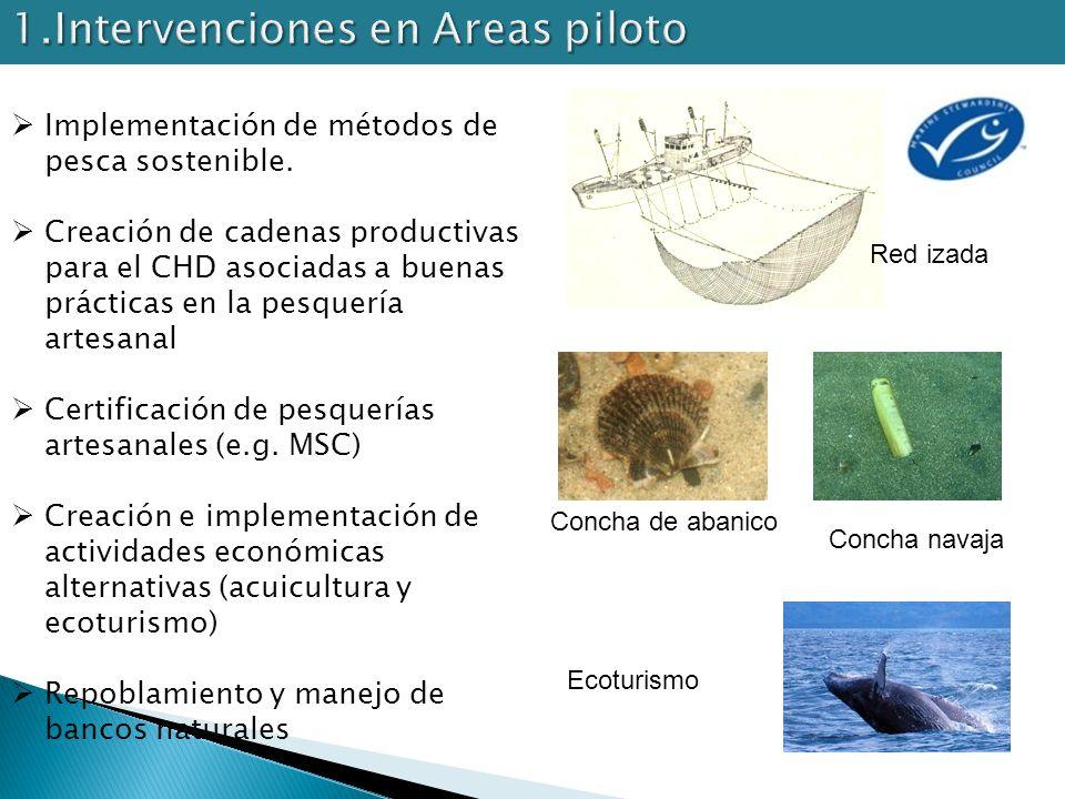 Implementación de métodos de pesca sostenible. Creación de cadenas productivas para el CHD asociadas a buenas prácticas en la pesquería artesanal Cert