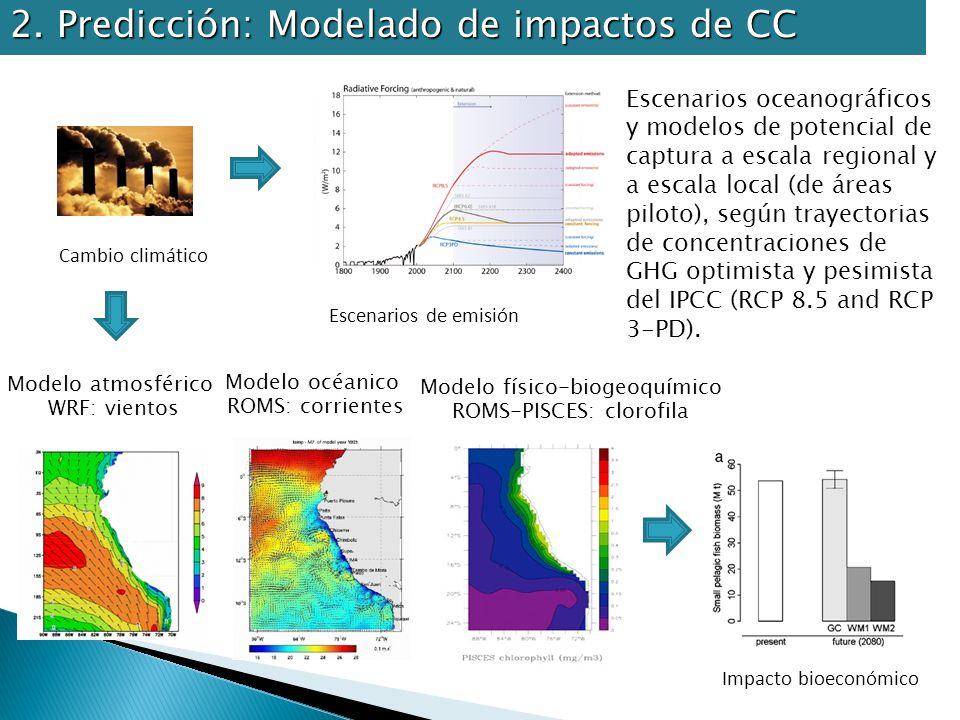 2. Predicción: Modelado de impactos de CC Modelo atmosférico WRF: vientos Modelo océanico ROMS: corrientes Modelo físico-biogeoquímico ROMS-PISCES: cl