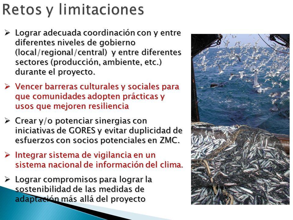 Lograr adecuada coordinación con y entre diferentes niveles de gobierno (local/regional/central) y entre diferentes sectores (producción, ambiente, et