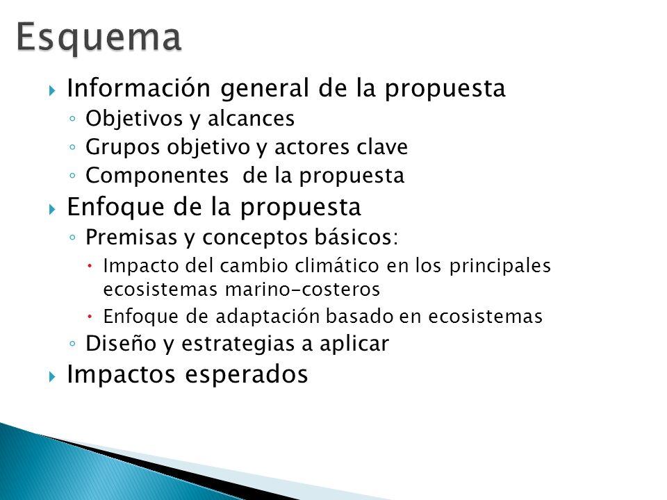 Información general de la propuesta Objetivos y alcances Grupos objetivo y actores clave Componentes de la propuesta Enfoque de la propuesta Premisas