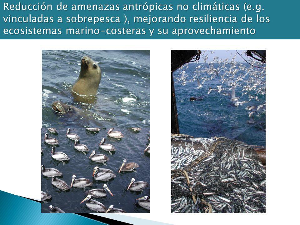 Reducción de amenazas antrópicas no climáticas (e.g. vinculadas a sobrepesca ), mejorando resiliencia de los ecosistemas marino-costeras y su aprovech