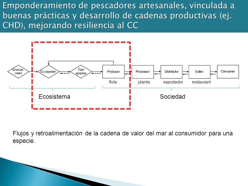 Flujos y retroalimentación de la cadena de valor del mar al consumidor para una especie. EcosistemaSociedad flotaplantarestaurantexportador Emponderam