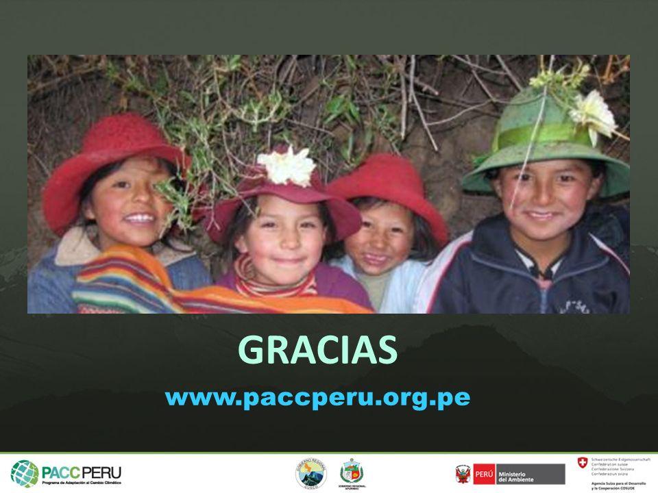GRACIAS www.paccperu.org.pe
