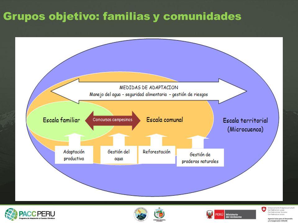 Grupos objetivo: familias y comunidades