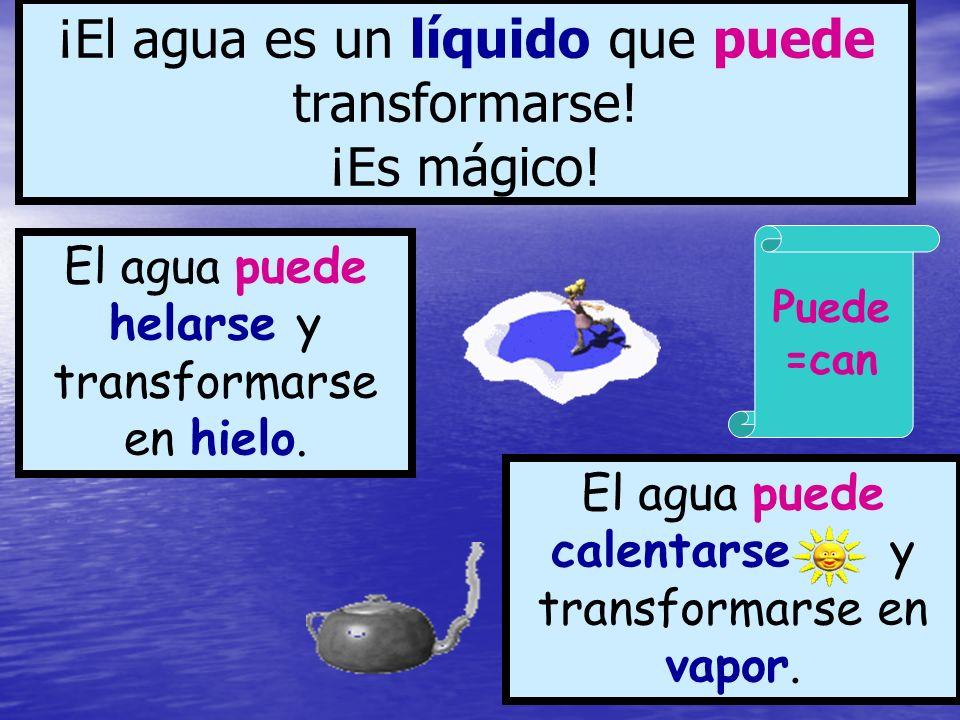 ¡El agua es un líquido que puede transformarse! ¡Es mágico! El agua puede helarse y transformarse en hielo. El agua puede calentarse y transformarse e