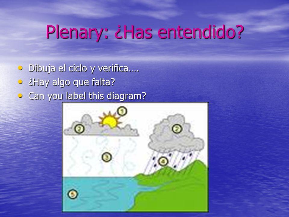 Plenary: ¿Has entendido? Dibuja el ciclo y verifica…. Dibuja el ciclo y verifica…. ¿Hay algo que falta? ¿Hay algo que falta? Can you label this diagra