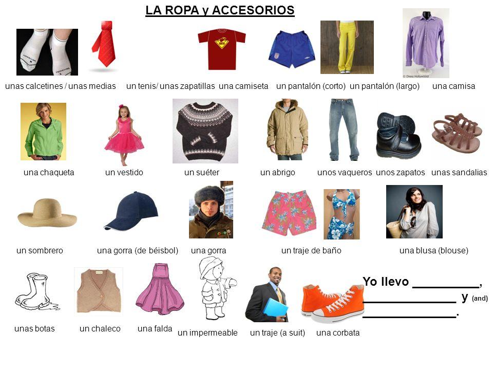 LA ROPA el traje de baño (bathing suit) la blusa (blouse) las botas (boots) el vestido (dress) la falda (skirt) la chaqueta (jacket) el impermeable (raincoat) el abrigo (coat) el chaleco (vest)el traje (suit) las sandalias (sandals) los zapatos (shoes) las zapatillas (sneakers) las pantuflas (slippers)la bata (robe) la corbata (tie) la camisa (shirt) los vaqueros (blue jeans) el pantalón (largo) / los pantalones (pants) el suéter los pantalones cortos / las bermudas (shorts) la camiseta (t shirt, undershirt)